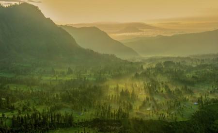Misty morning  at Cemoro Lawang