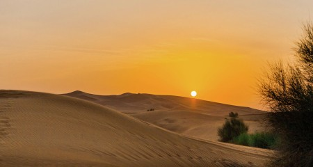 The Sunrise in the Desert...