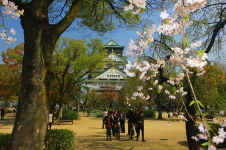 Osaka Castle Before Sakura