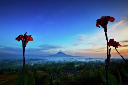 Merapi Volcano in Frame