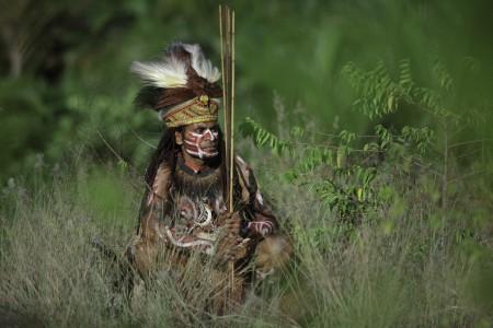 papua culture