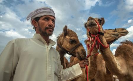 Arab Sheperd