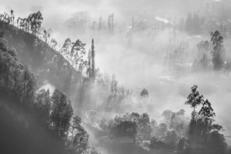 Kabut Pagi di Kintamani