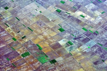 Areal Pertanian