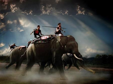ELEPHANTRACING