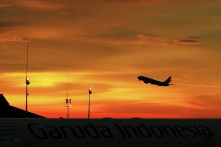 Fly on Sunset