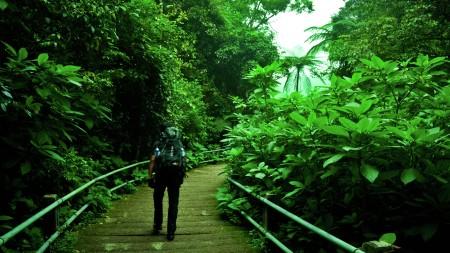 Mencari Hijaunya Alam