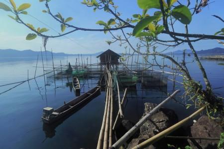 Kehidupan di Danau Tondano