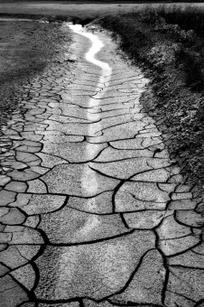 Salt mud path