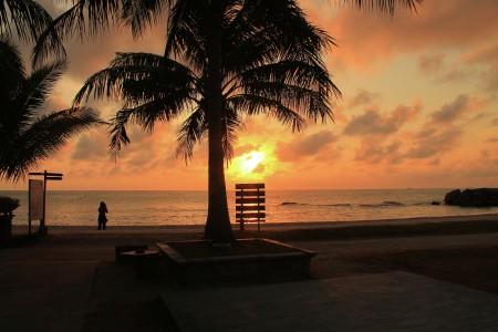 Pagi di tepi pantai